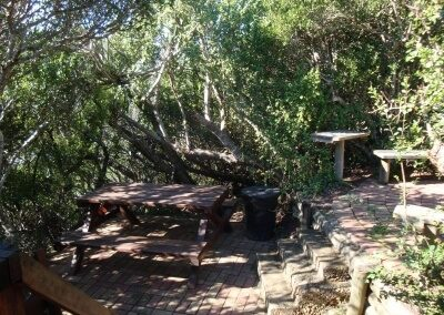 Bushmans log cabin - 35