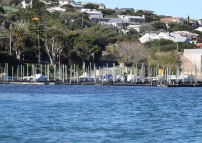 the-marina (12)