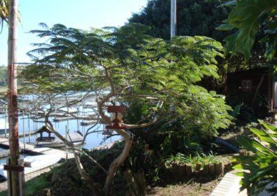 the-marina (20)
